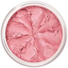 Lily Lolo Candy Girl Blush: Gluten free. A lovely shimmery, pale pink blush, the perfect addition to your beach girl look.